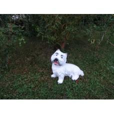 Vesthailendas baltais terjers